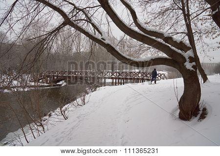 Skier In The Park