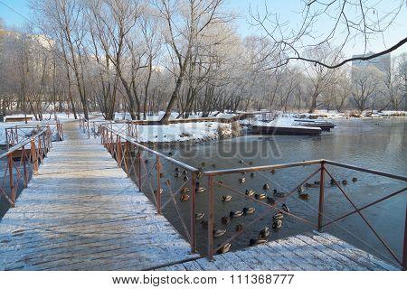On Pontoon Bridge