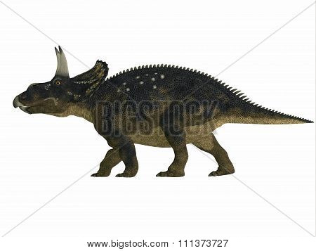 Nedoceratops Side Profile