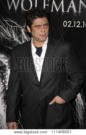 Benicio Del Toro at the American Premiere of