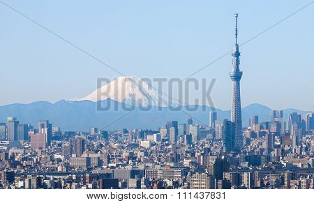 Tokyo city view with Tokyo sky tree and Fuji mountain
