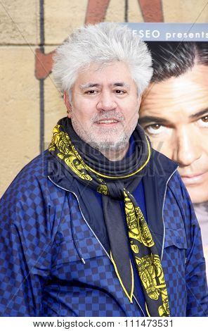 Pedro Almodovar at the American Cinematheque's 69th Annual Golden Globe Awards Foreign-Language Nominee Event held at the Egyptian Theater on January 15, 2012.