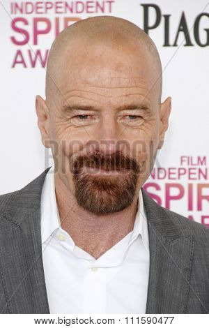 Bryan Cranston at the 2013 Film Independent Spirit Awards held at the Santa Monica Beach in Los Angeles, United States on February 23, 2013.