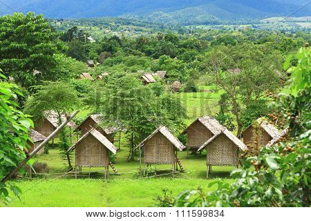 Lovely View Of The Green Palm Trees Bungalows - Himalayan Resort Thailand Pai