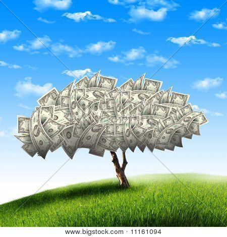 Tree of dollar bills