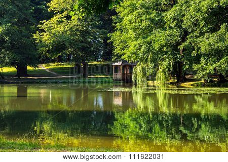 Pond Reflections In The Park