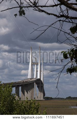 View of Sidney Lanier Bridge