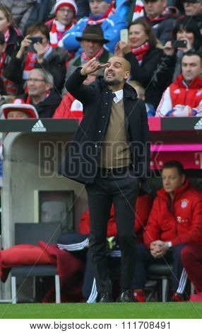 MUNICH, GERMANY - DECEMBER 12 2015: Josep Guardiola manager of Bayern Munich during the Bundesliga match between Bayern Muenchen and FC Ingolstadt, on December 12, 2015 in Munich, Germany.