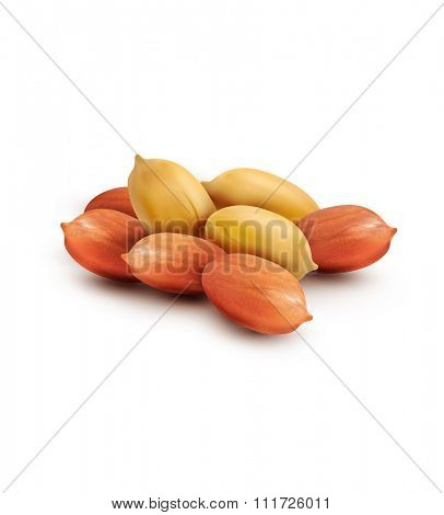 peanut kernels isolated on a white background (design element)