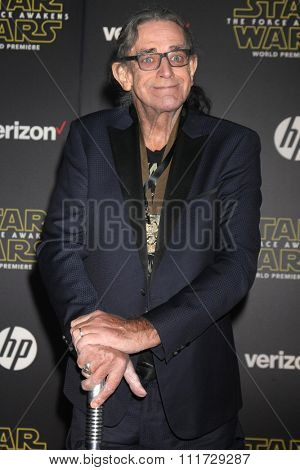 LOS ANGELES - DEC 14:  Peter Mayhew at the Star Wars: The Force Awakens World Premiere at the Hollywood & Highland on December 14, 2015 in Los Angeles, CA