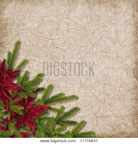 Card For The Holiday With Branches And Flower On The Abstract Background