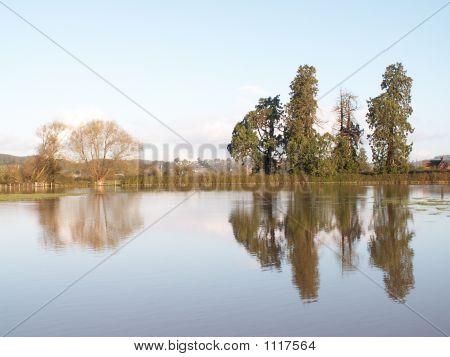 Forden Flood