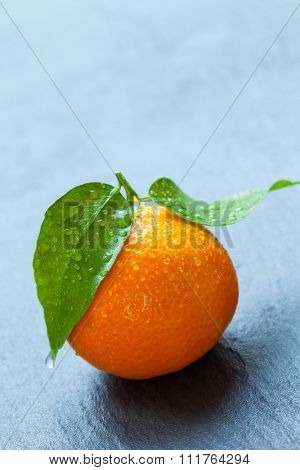 Fresh dewy mandarin placed on black stone. Copyspace for text