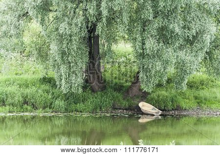 Boat under a willow