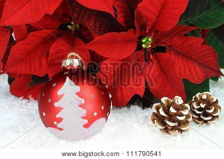 Typical Christmas Symbols
