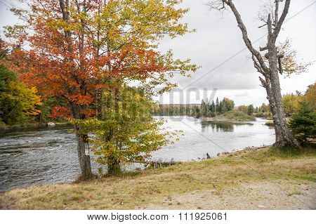 Island In The Androscoggin River