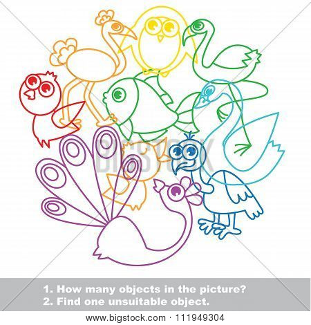 Birds mishmash colorful set in vector.