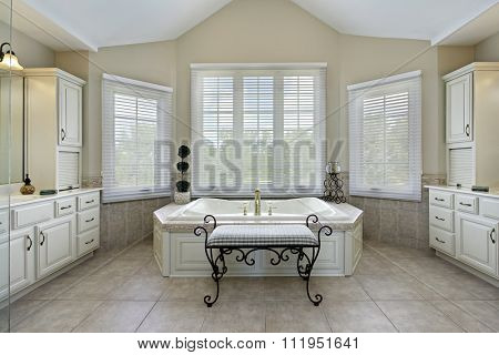 Master bath in luxury home with large bathtub