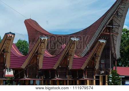Very Unique and Traditional houses of Tana Toraja with red roof