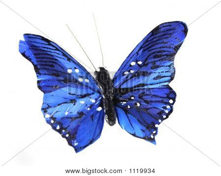 model of the blue butterfly on the white background poster