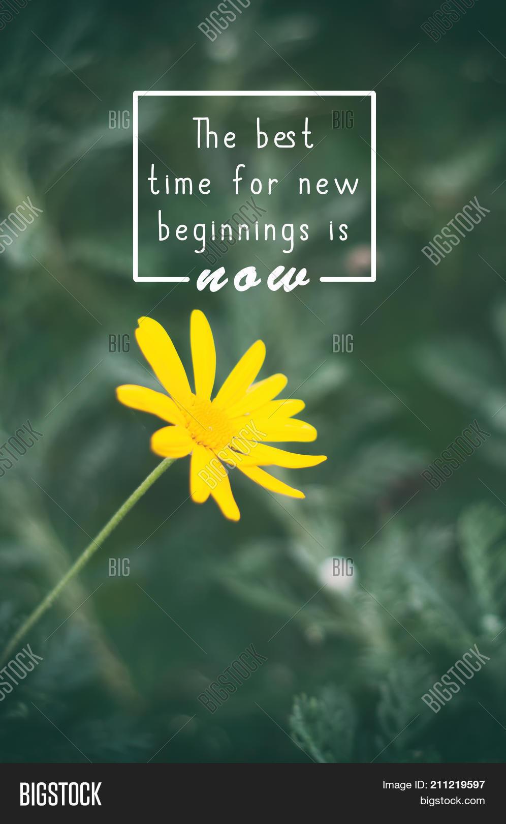Life Inspirational Image Photo Free Trial Bigstock