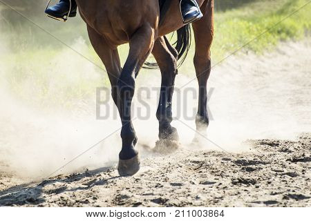 The hooves of walking horse with rider in sand dust. Shallow DOF.