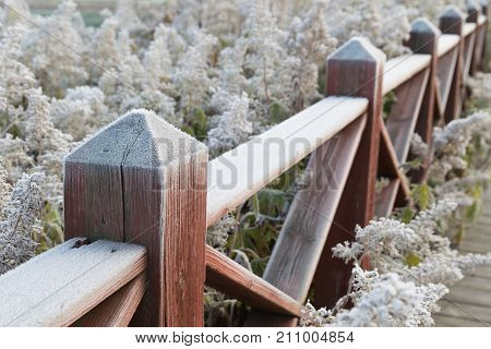 Wooden fence covered with hoar frost on an cold autumn morning.