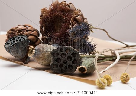 Decorative background of dried up plants, close up. Floristics workshop, arrangement and ikebana concept