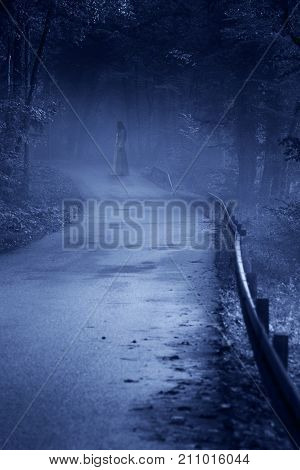 Mysterious Woman Ghost in White Dress in the Misty Forest Road vintage noise filter