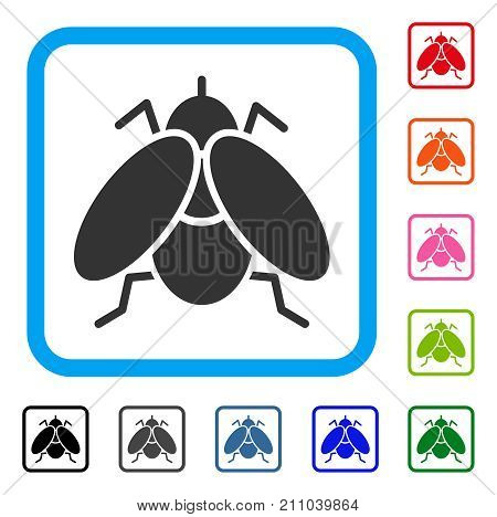 Fly Insect icon. Flat grey pictogram symbol in a light blue rounded square. Black, gray, green, blue, red, orange color versions of Fly Insect vector. Designed for web and app UI.