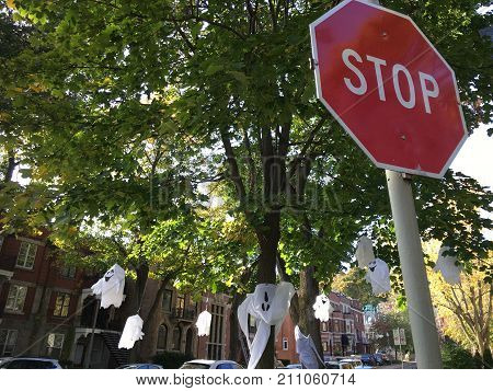 Halloween decorations on street with ghost decorations hanging on tree holiday Halloween night trick or treat safety conceptual safety on road and at home Image