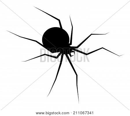 Spider Black Widow Silhouette Vector Symbol Icon Design. Beautiful Illustration Isolated On White Ba