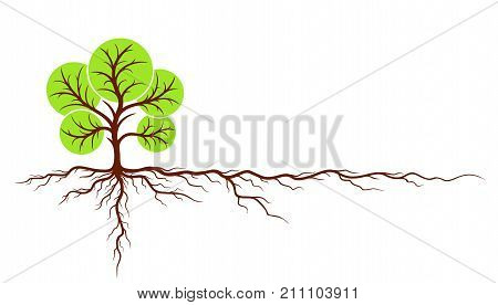 The Big green tree logo with roots.