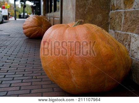 Pumpkin Invasion On Main Street