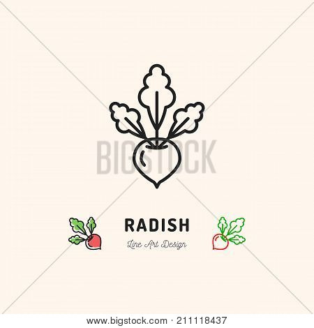 Radish icon Vegetables logo. Thin line art design, Vector outline illustration