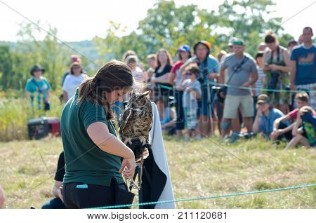 HASTINGS, MN/USA - SEPTEMBER 23, 2017: University of Minnesota Raptor Center staff member presents Great Horned Owl to crowd at Carpenter Nature Center during fall raptor release event in Hastings.