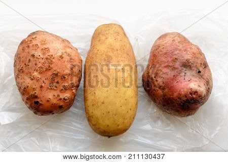 Three Different Potatoes