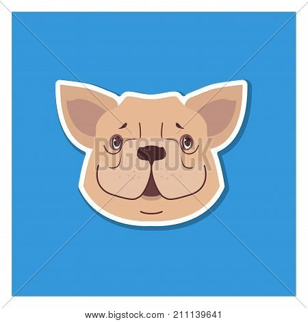 Canine smiling face of French Bulldog drawn icon on blue background. Breed of dogs with short muzzle, flat forked nose, wide cloven upper lip, stoating ears. Vector illustration in cartoon style.