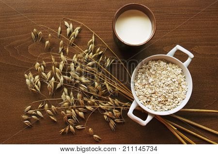 Oat ears stems and oat flakes in a white pot and cup of milk on dark brown wood table. Top view. oat flakes small size grind. Useful fiber-rich product and milk source of protein. Dietary breakfast.
