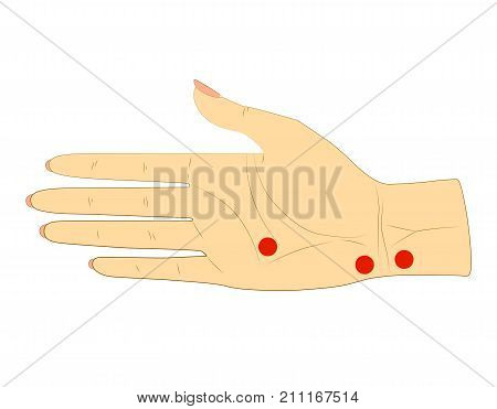 The inner side of the woman's right hand with dots for acupuncture massage. Vector. Isolated on white background