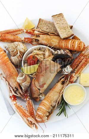 Crustaceans On A Plate