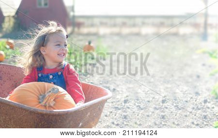 Little girl in red outfit sitting inside old wheelbarrow with big pumpkin at farm field pumpkin patch, smiling happily. Mockup for card.