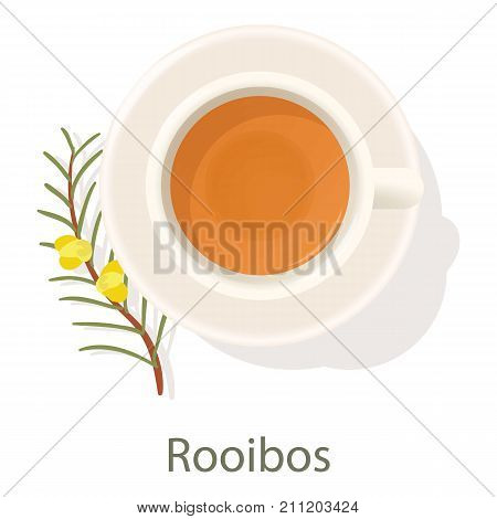 Rooibos tea icon. Cartoon illustration of rooibos tea vector icon for web