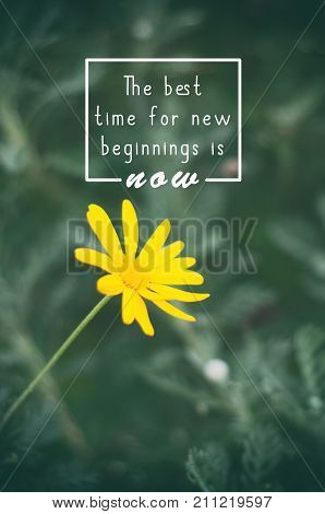 Life inspirational quotes - The best time for new beginnings is now. Blurry retro background.
