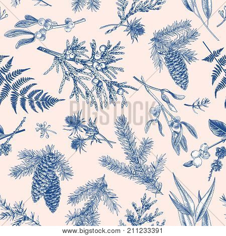 Christmas seamless pattern in engraving style. Vintage. Botanical background with coniferous plants ferns and berries. Vector illustration. Blue.