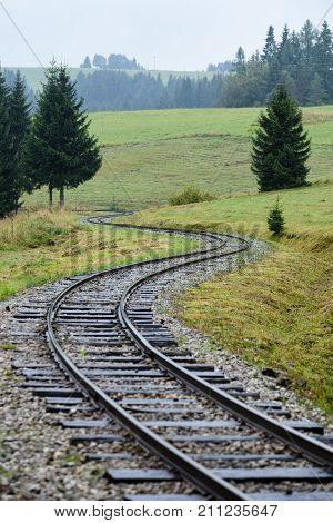 Wavy Railroad Tracks In Wet Summer Day In Forest