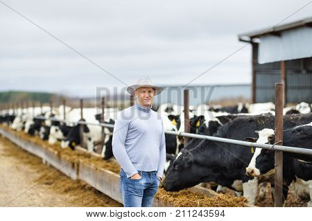 Farmer portrait against background of farm cows