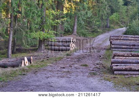 timber ready for transport South Bohemia Czech Republic