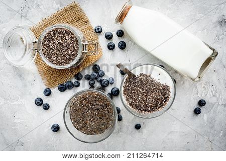 How to eat chia seeds. Dessert with yogurt, chia and blueberries on grey background top view.