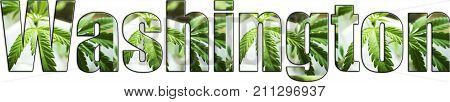 Washington Marijuana Logo High Quality Stock Photo
